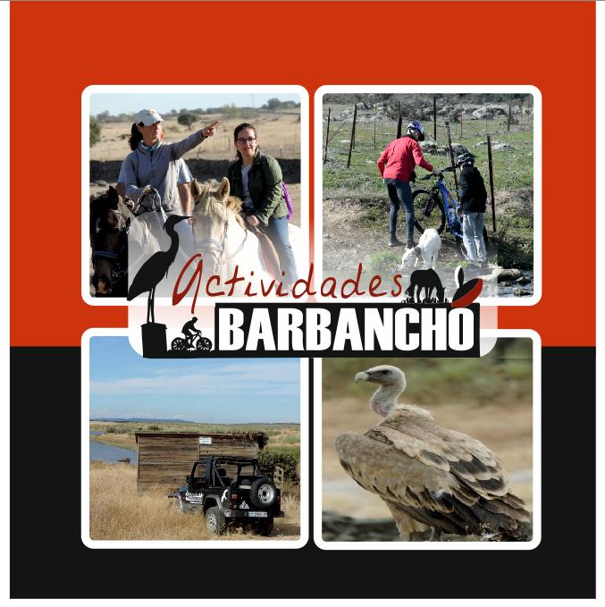 ACTIVIDADES BARBANCHO