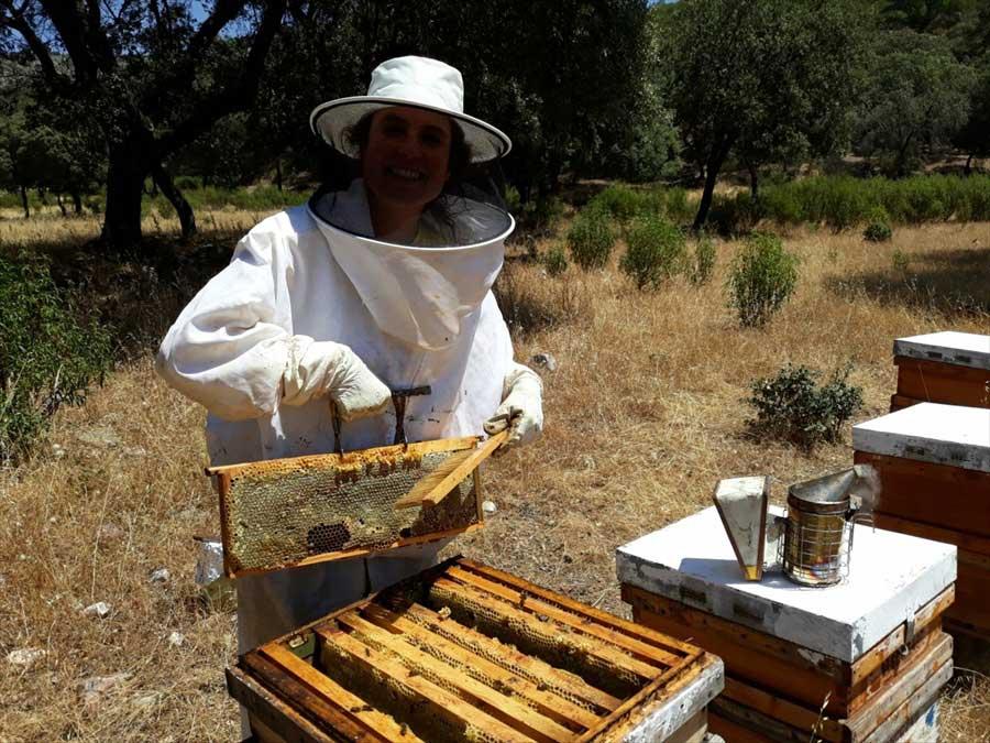 apicultura-monfrague